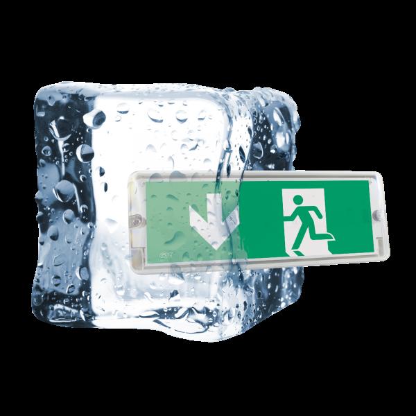 IZAR ICE